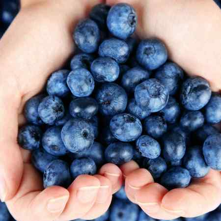 arandanos-azules-forma-de-corazon-con-manos