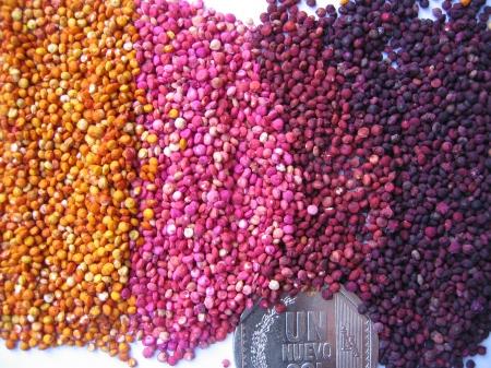 quinua-colores