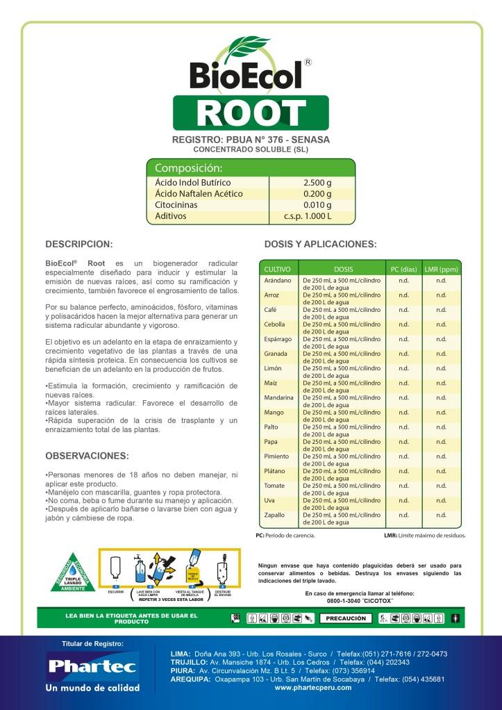 BE RootFinal