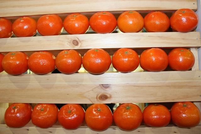mandarinas1